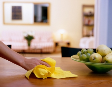 clean without chemicals microfiber cloths